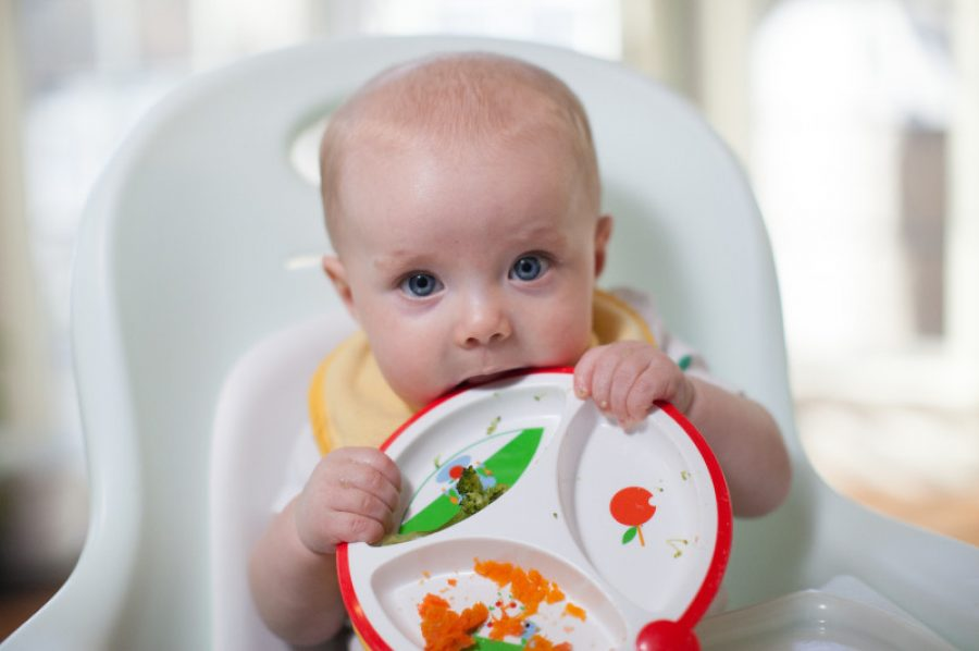 Lifestyle_Solid_Feeding_Plate_IMG_1196